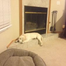 charlie-napping